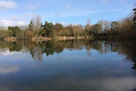 Rosedale Fishing Lake